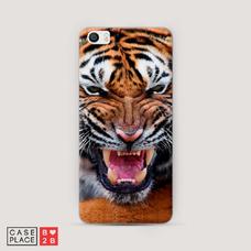 Диз. Тигр
