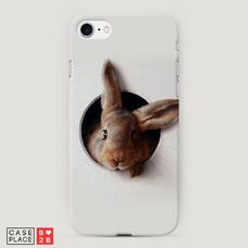 Диз. Любопытный кролик
