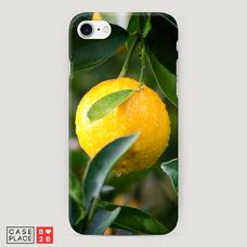Диз. Растущий лимон