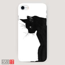 Диз. Black cat