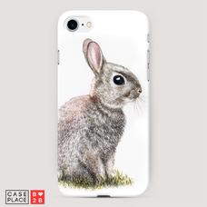 Диз. Кролик в траве