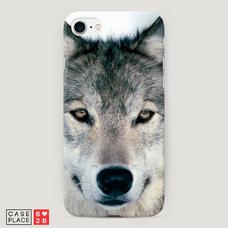 Диз. Волк