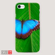 Диз. Тропическая бабочка 1