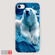 Диз. Белый медведь
