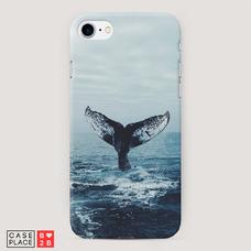 Диз. Хвост кита
