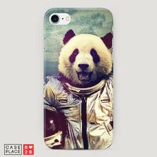Диз. Космическая панда