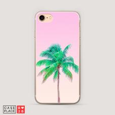 Диз. Пальма на розовом фоне