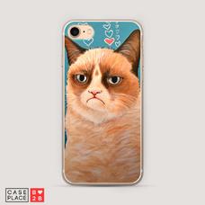 Диз. Сердитый кот